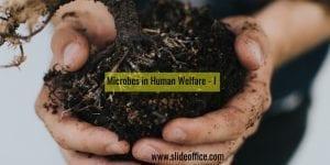Microbes in Human Welfare