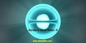 Microbes in Human Welfare