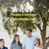 Principles of inheritance